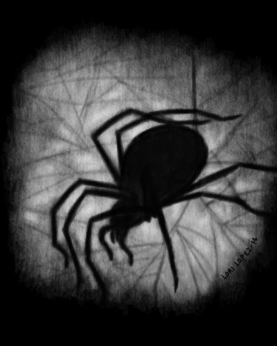 Cover Art:  Spider Soup